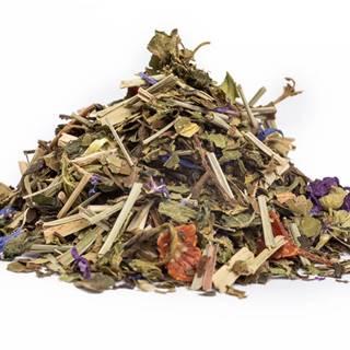 PRAVÝ ČAS NA DETOX - bylinný čaj, 10g