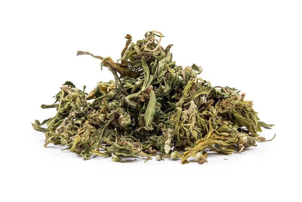 Manu tea KONOPE Z LISTOV TIGRA ručne drhnuté - CBD 583 mg/kg, 10g