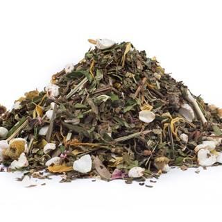 KONOPE S PRÍCHUŤOU OVOCIA BIO - bylinný čaj, 10g