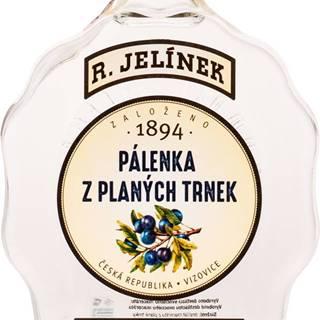 Rudolf Jelínek Trnkovica Budík 42% 0,7l